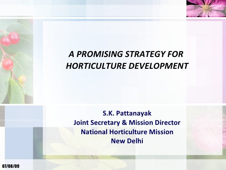 A PROMISING STRATEGY FOR            HORTICULTURE DEVELOPMENT                          S.K. Pattanayak             Joint Se...