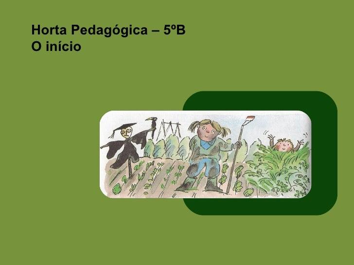 Horta Pedagógica – 5ºB O início