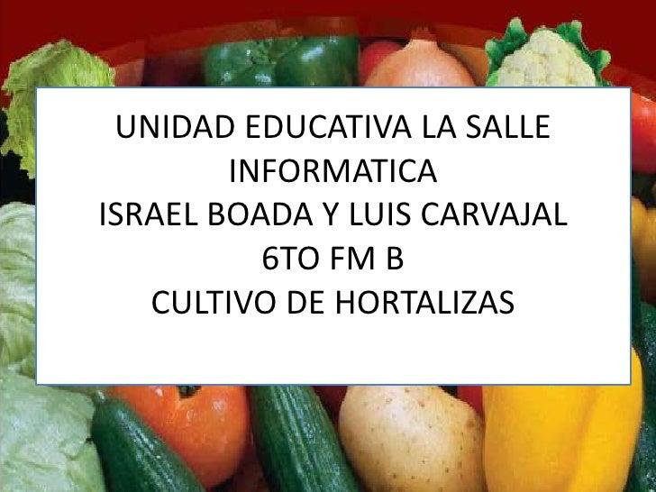 UNIDAD EDUCATIVA LA SALLE        INFORMATICAISRAEL BOADA Y LUIS CARVAJAL          6TO FM B   CULTIVO DE HORTALIZAS