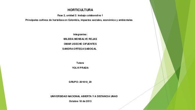 HORTICULTURA Fase 2, unidad 2: trabajo colaborativo 1 Principales cultivos de hortalizas en Colombia, impactos sociales, e...