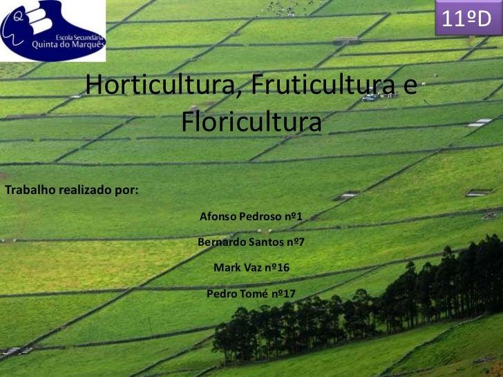 11ºD             Horticultura, Fruticultura e                    FloriculturaTrabalho realizado por:                      ...