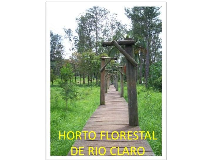 HORTO FLORESTAL DE RIO CLARO<br />