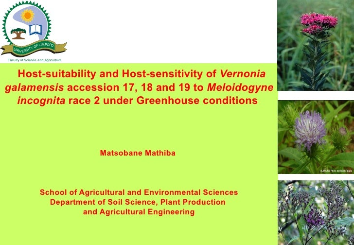 F LIMPOPO   UN         YO     I V ERSITFaculty of Science and Agriculture  Host-suitability and Host-sensitivity of Vernon...