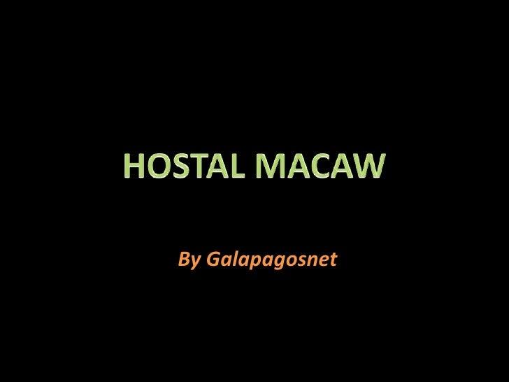 HOSTAL MACAW<br />By Galapagosnet<br />