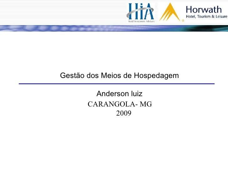Gestão dos Meios de Hospedagem Anderson luiz CARANGOLA- MG 2009