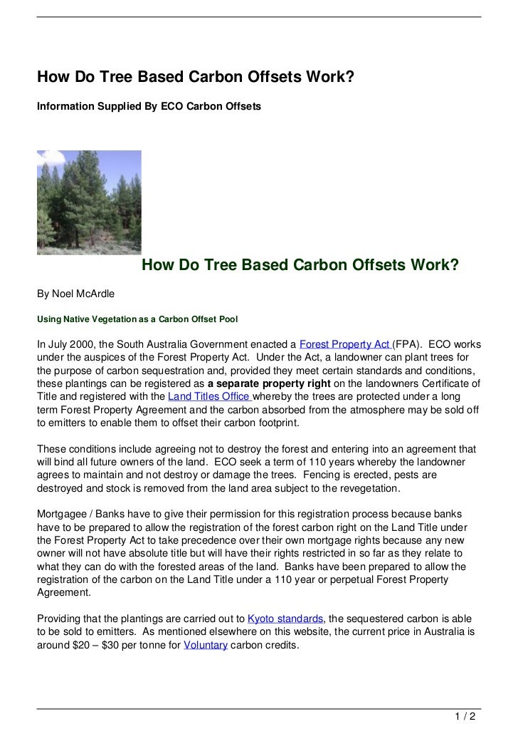 How Do Tree Based Carbon Offsets Work?Information Supplied By ECO Carbon Offsets                        How Do Tree Based ...