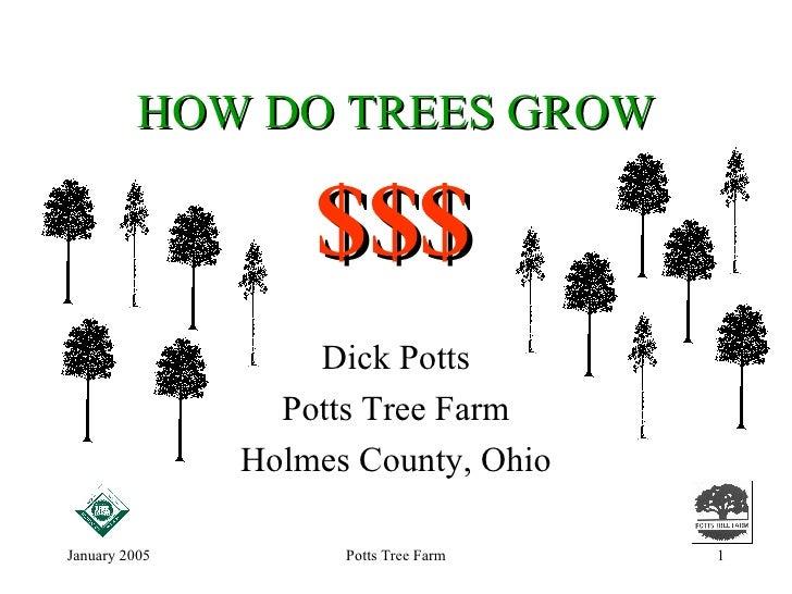 HOW DO TREES GROW Dick Potts Potts Tree Farm Holmes County, Ohio $$$