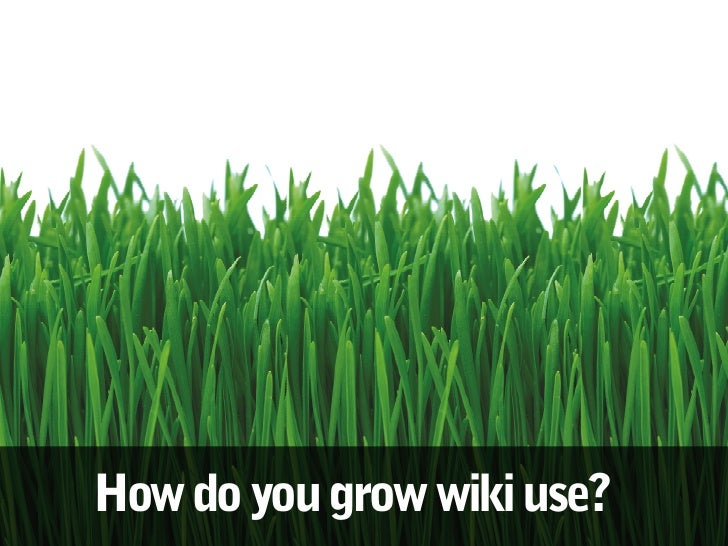 How do you grow wiki use?