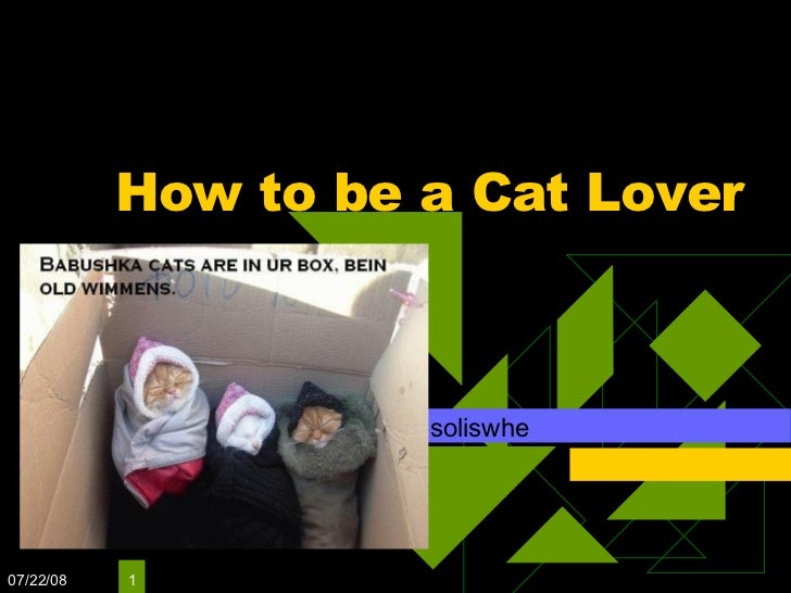 How to be a Cat Lover soliswhe 06/04/09