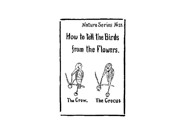 How to tell the Birds from the Flowers by Robert Williams Wood