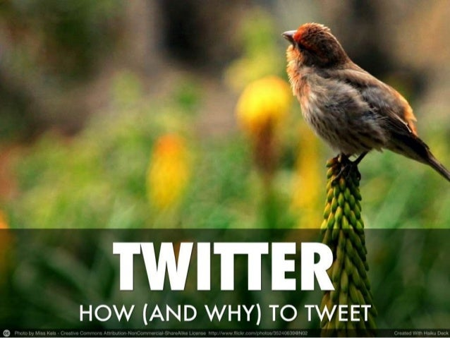 How (and why) to use Twitter