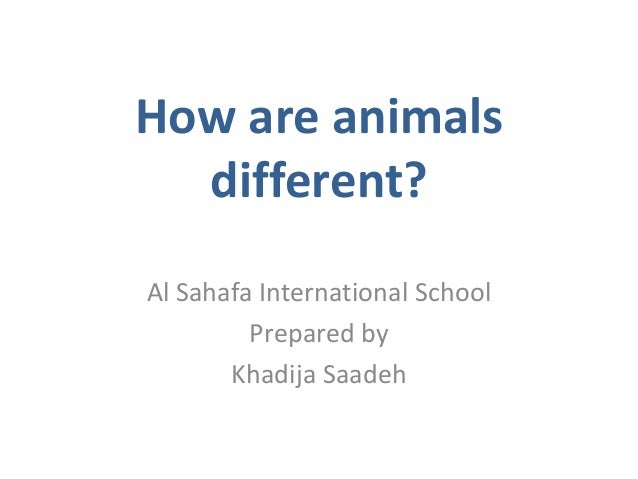 How are animals different