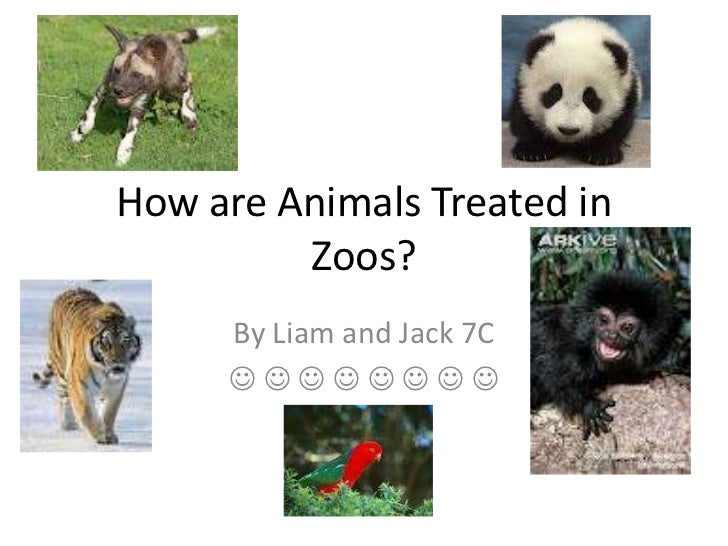 How are Animals Treated in         Zoos?     By Liam and Jack 7C     