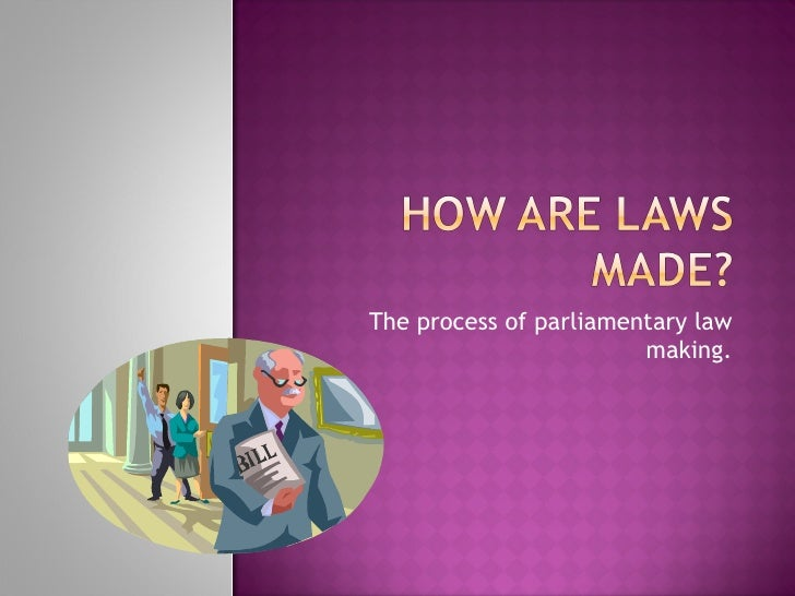 The process of parliamentary law making.
