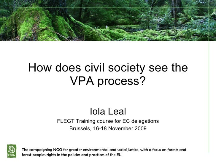 How does civil society see the VPA process? Iola Leal FLEGT Training course for EC delegations Brussels, 16-18 November 20...