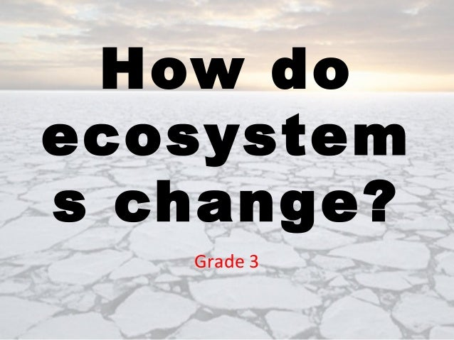 How do ecosystems change