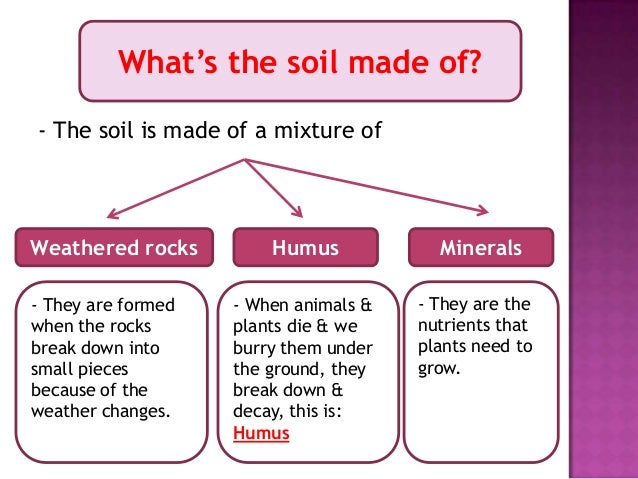 How does soil affect living things for Where do we find soil