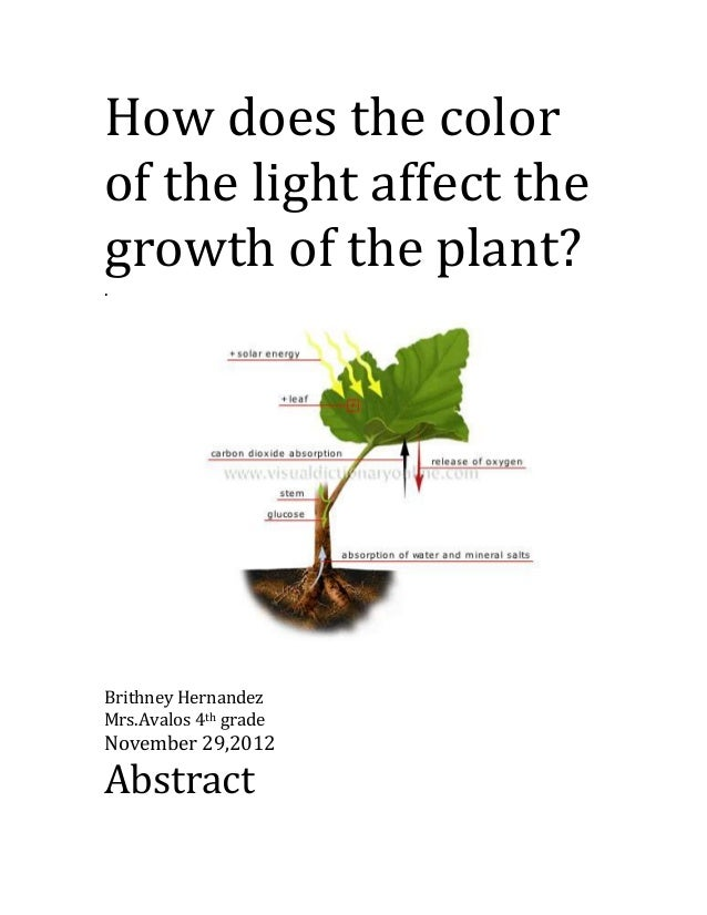 an analysis of the effects of the color of light in the rate of photosynthesis This type of analysis has helped us better understand the groups the rate of photosynthesis will begin to light quality has a marked effect upon.