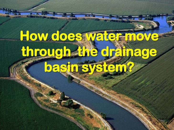 How does water movethrough the drainage    basin system?