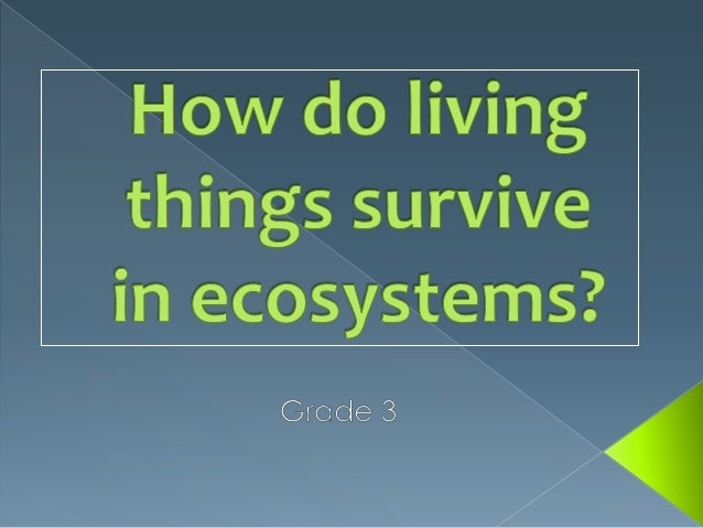 How do living things survive in ecosystems