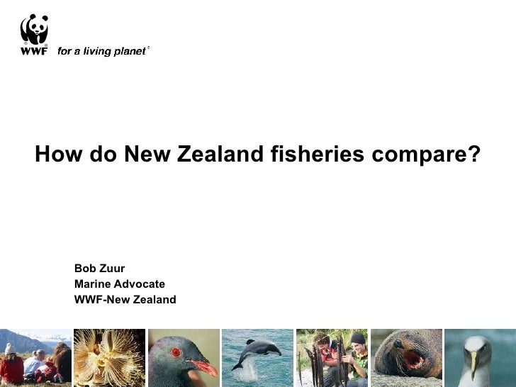 How do New Zealand fisheries compare? Bob Zuur Marine Advocate WWF-New Zealand