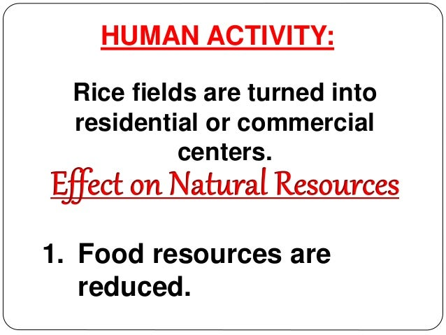 human activities and the loss of natural resources essay Impact of human activities on natural in this essay, the effect that human activity has on these natural of natural resources exacerbate natural.