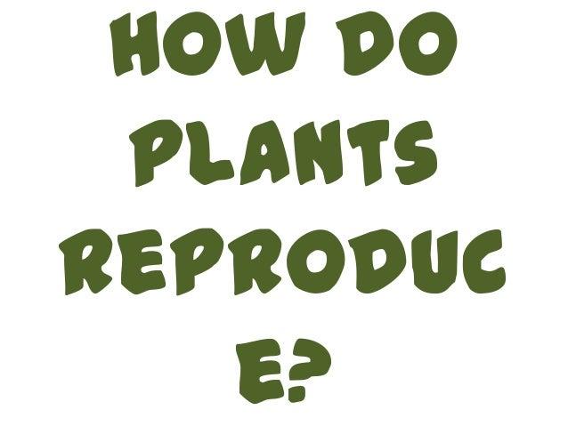How do plants reproduce