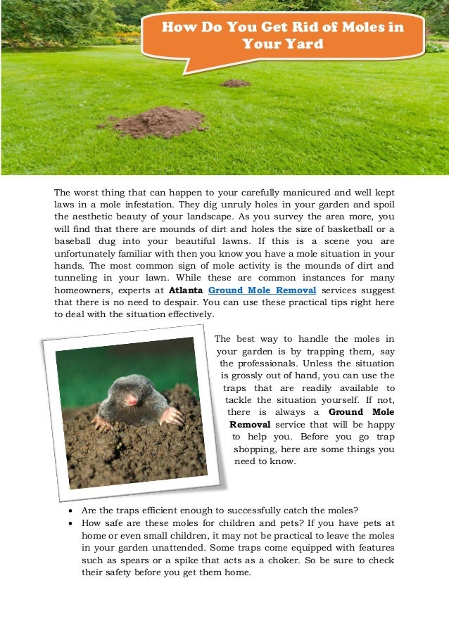 how do you get rid of moles in your yard