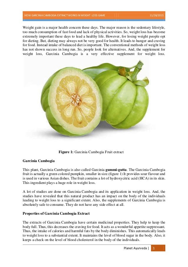 fruit ninja game garcinia cambogia fruit