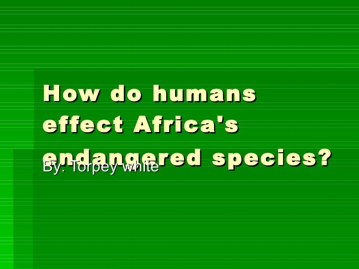How do humans effect Africa's endangered species?   By: Torpey white