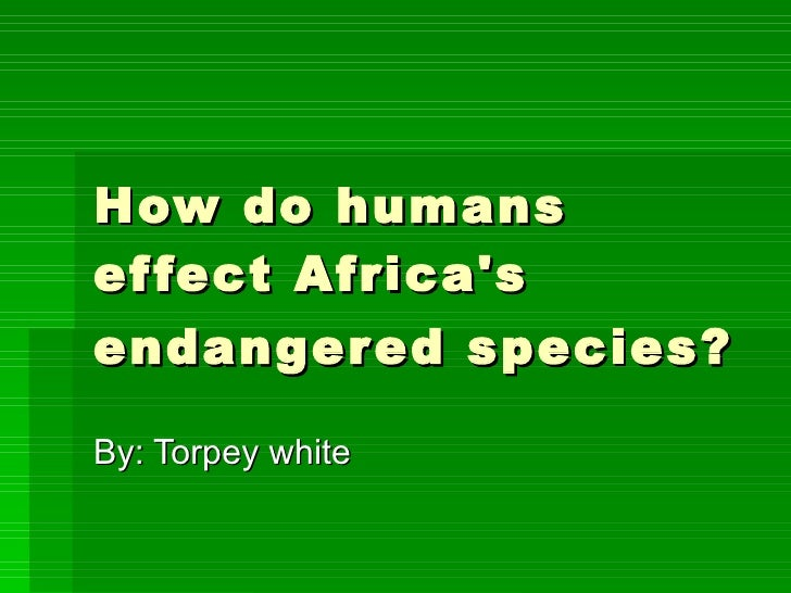 How Humans Effect Africas Endangered Species