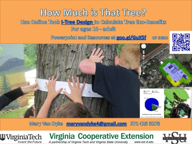 How Much is That Tree? Poster for 4-H Science Conference 2013