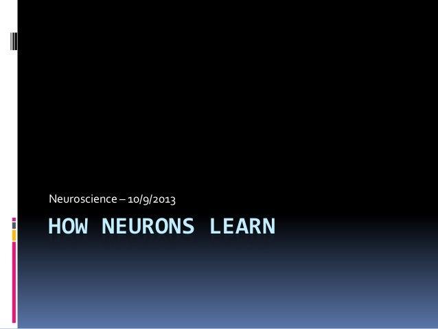 HOW NEURONS LEARN Neuroscience – 10/9/2013