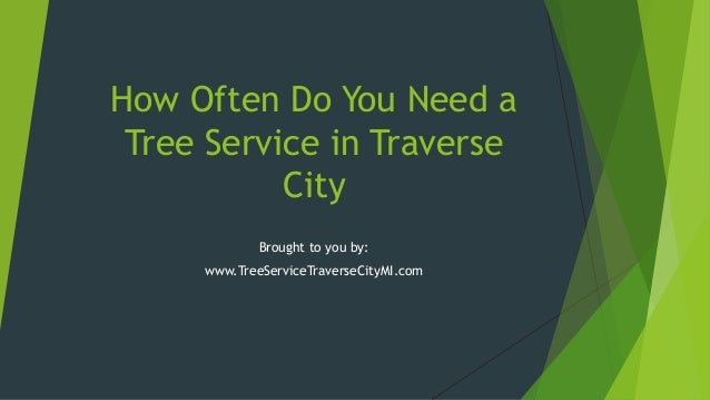 How Often Do You Need aTree Service in TraverseCityBrought to you by:www.TreeServiceTraverseCityMI.com