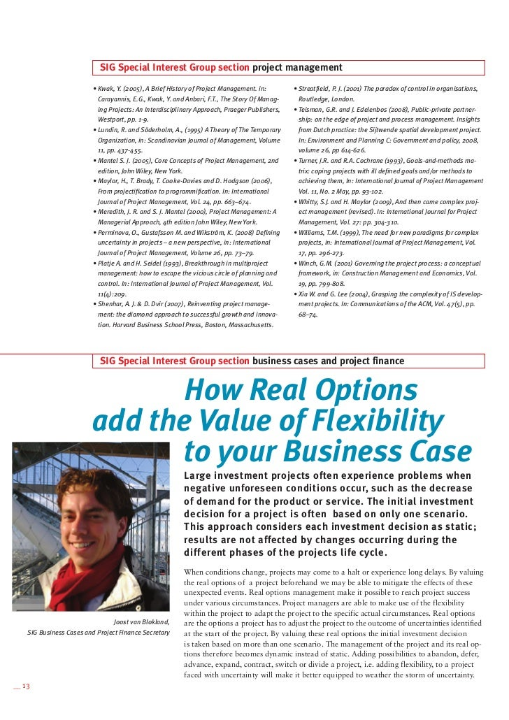 Real options examples and principles of valuation and strategy