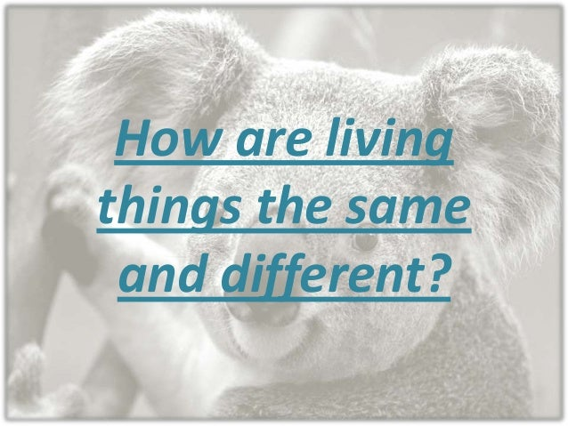 How r living thins the same and different