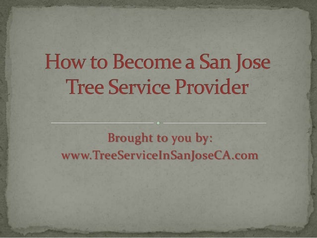How to Become a San Jose Tree Service Provider