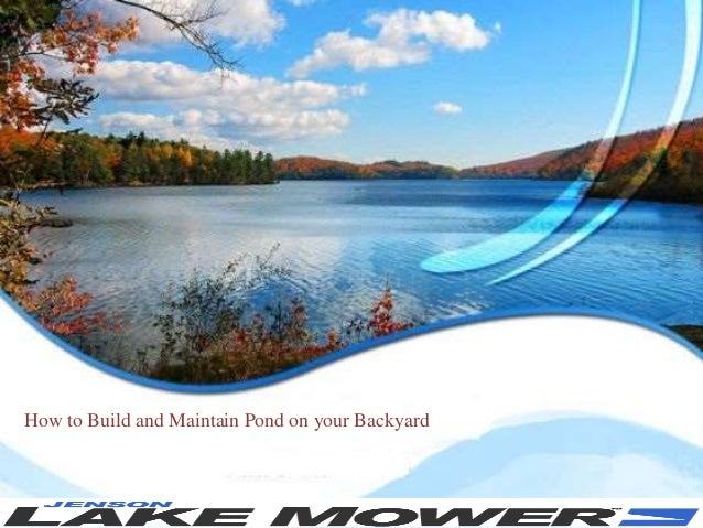 How to build and maintain pond on your backyard for Maintaining outdoor fish pond