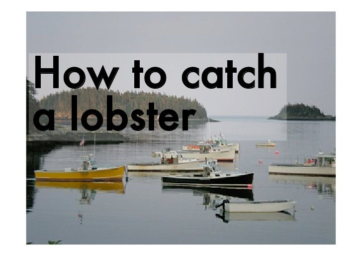 How To Catch A Lobster
