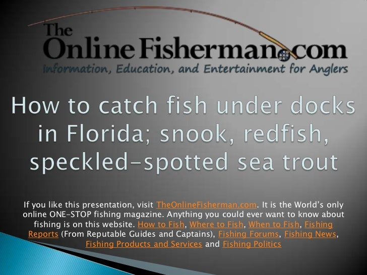 If you like this presentation, visit TheOnlineFisherman.com. It is the World's onlyonline ONE-STOP fishing magazine. Anyth...