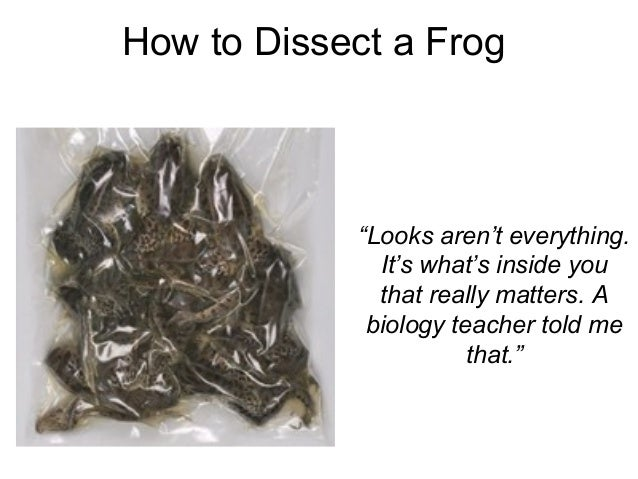 """How to Dissect a Frog """"Looks aren't everything. It's what's inside you that really matters. A biology teacher told me that..."""