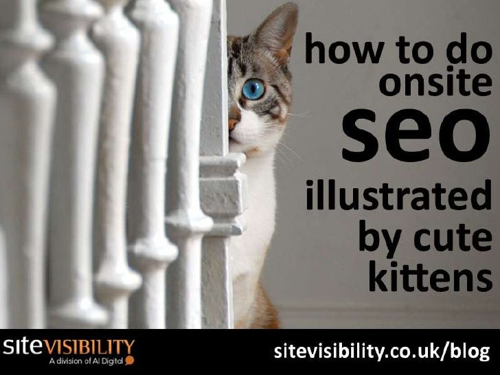 How To Do Onsite Seo - Illustrated By Cute Kittens