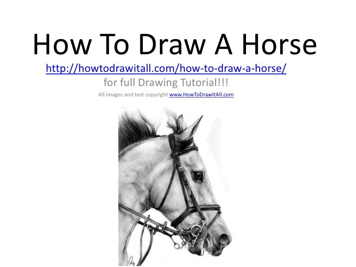 How To Draw A Horsehttp://howtodrawitall.com/how-to-draw-a-horse/           for full Drawing Tutorial!!!          All imag...