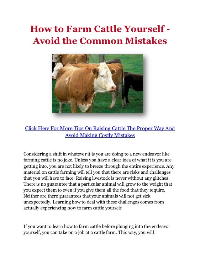 How to Farm Cattle Yourself -   Avoid the Common MistakesClick Here For More Tips On Raising Cattle The Proper Way And    ...