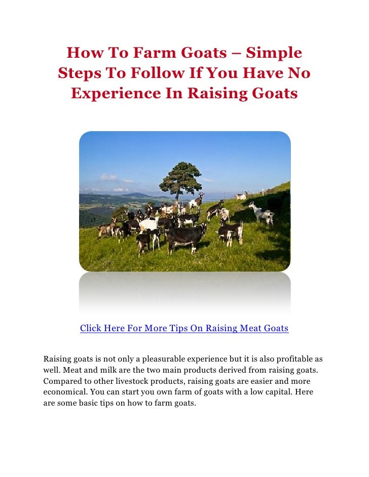 How To Farm Goats – Simple    Steps To Follow If You Have No     Experience In Raising Goats          Click Here For More ...