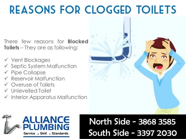 How To Fix A Clogged Blocked Toilet Few Important Tips