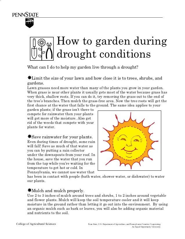 How to Garden During Drought Conditions - Penn State