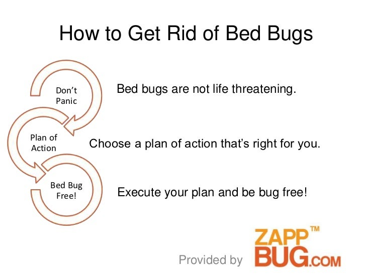 How to Get Rid of Bed Bugs      Don't         Bed bugs are not life threatening.      PanicPlan ofAction         Choose a ...