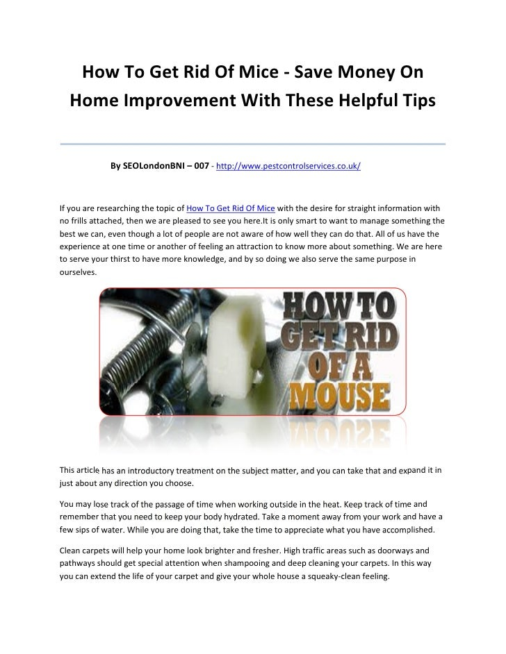 How To Get Rid Of Mice - Save Money On  Home Improvement With These Helpful Tips_______________________________________   ...
