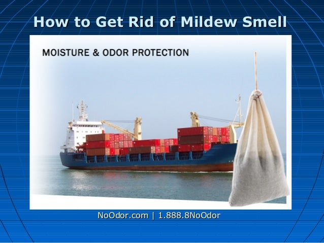 How to get rid of mildew smell - Tips to banish bad odors ...